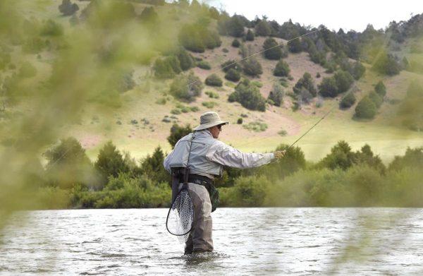 Montana fisher